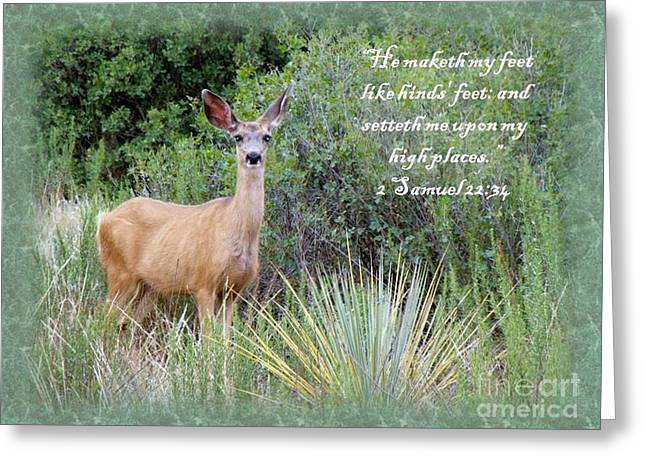 Hinds Feet On High Places Greeting Card by Donna Parlow