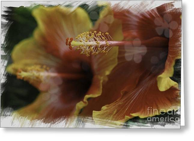 Greeting Card featuring the photograph Hippi Hibiscus by Lori Mellen-Pagliaro