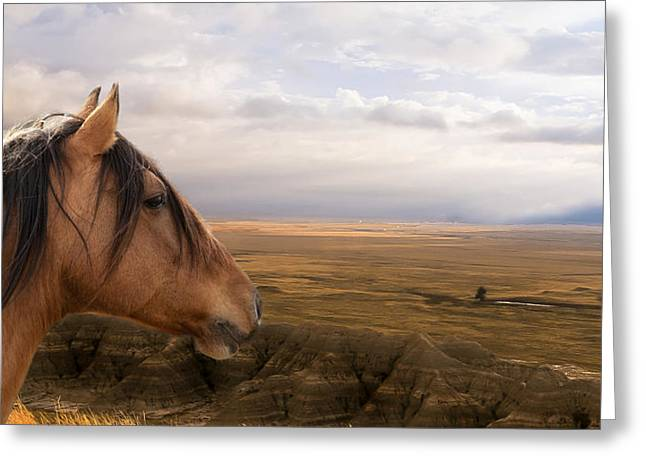His Domain Greeting Card by Ron  McGinnis