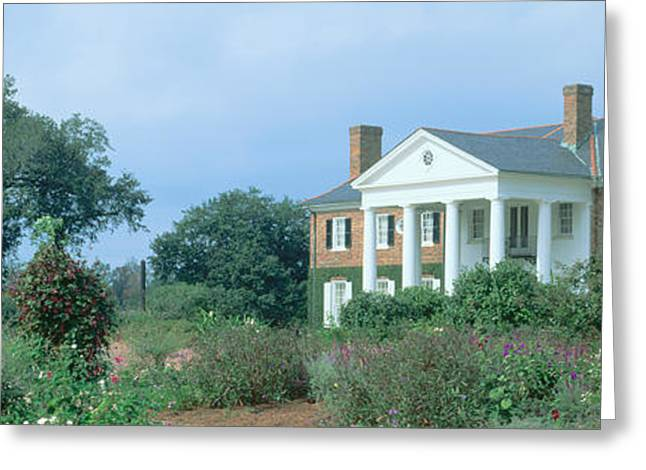 Historic Boone Hall Cotton Plantation Greeting Card by Panoramic Images