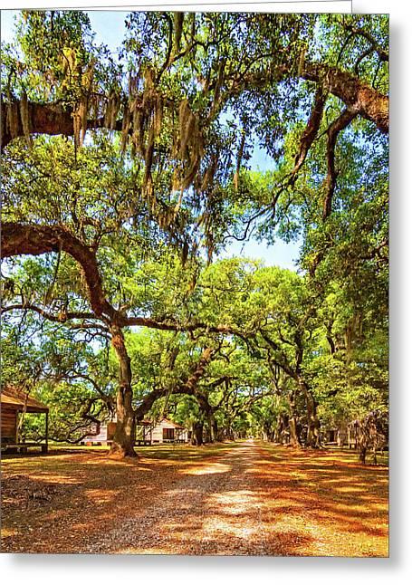 Historic Lane 3 Greeting Card