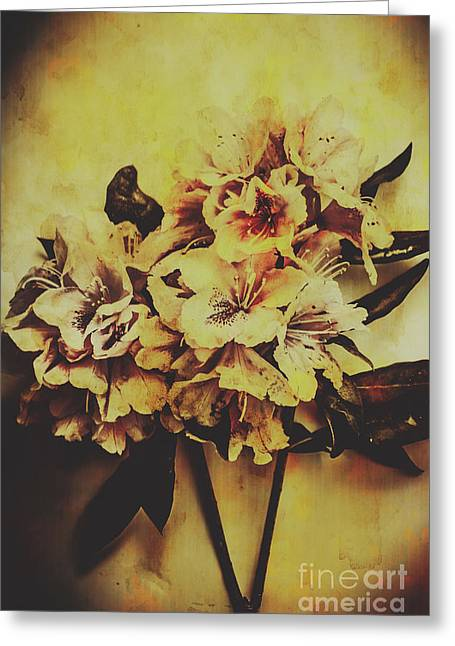 History In Bloom Greeting Card by Jorgo Photography - Wall Art Gallery