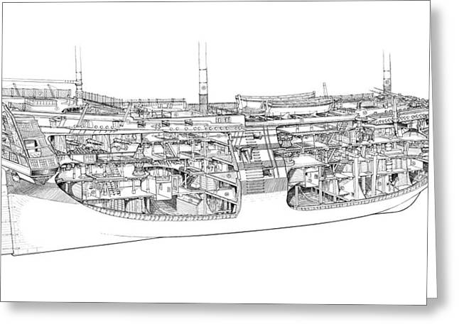 Warship Drawings Greeting Cards - HMS Victory cutaway Greeting Card by Colin Mudie