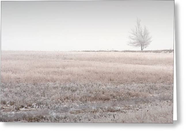 Hoarfrost Pasture Greeting Card by Fred Lassmann