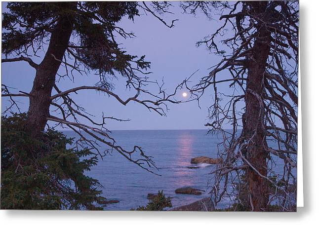Holding On To The Moon Greeting Card by Darylann Leonard Photography