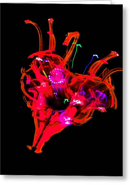 Hole In My Heart Greeting Card