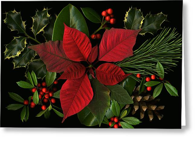 Holiday Greenery Greeting Card by Deborah J Humphries