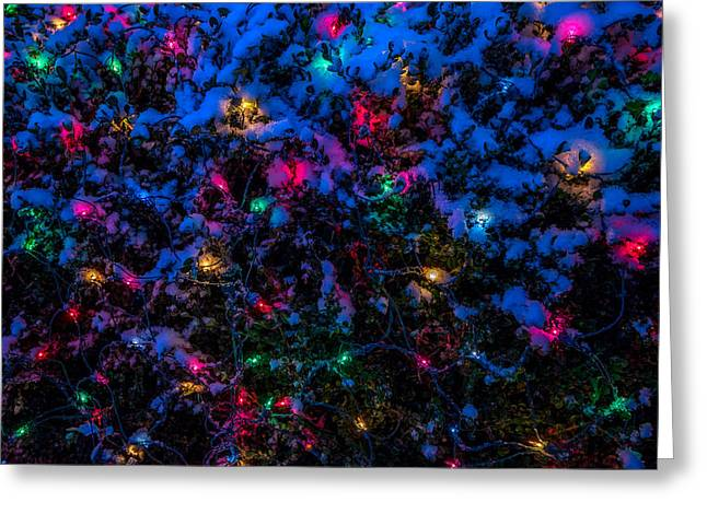 Holiday Lights In Snow Greeting Card