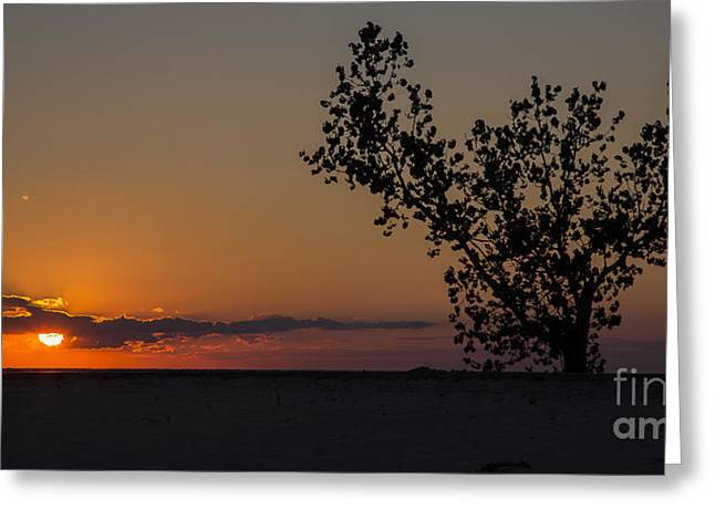 Holland Beachfront Greeting Card by Twenty Two North Photography