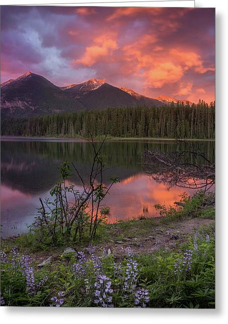 Greeting Card featuring the photograph Holland Lake Spectacular // Holland Lake, Montana by Nicholas Parker