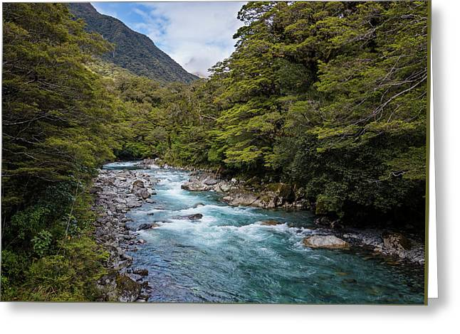 Hollyford River New Zealand Greeting Card by Joan Carroll