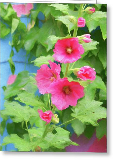 Greeting Card featuring the photograph Hollyhocks - 1 by Nikolyn McDonald