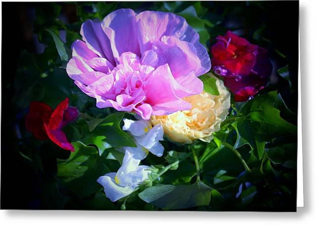 Snapdragons Greeting Cards - Hollyhocks and Snapdragons  Greeting Card by Marjorie Imbeau