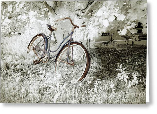 Greeting Card featuring the photograph Hollywood Schwinn II by Craig J Satterlee
