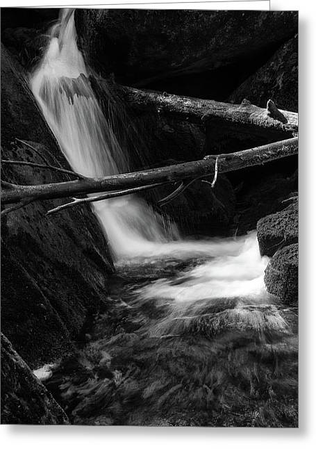 Holtemme, Harz - Monochrome Version Greeting Card
