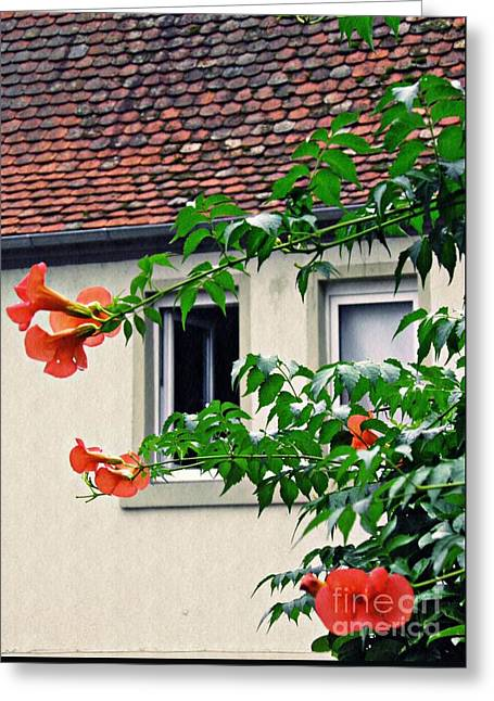 Home And Garden Schierstein 4 Greeting Card by Sarah Loft