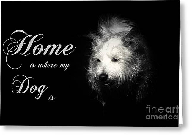 Home Is Where My Dog Is Greeting Card by Clare Bevan