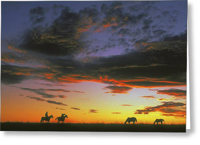 Home On The Range Greeting Card by Carl Purcell