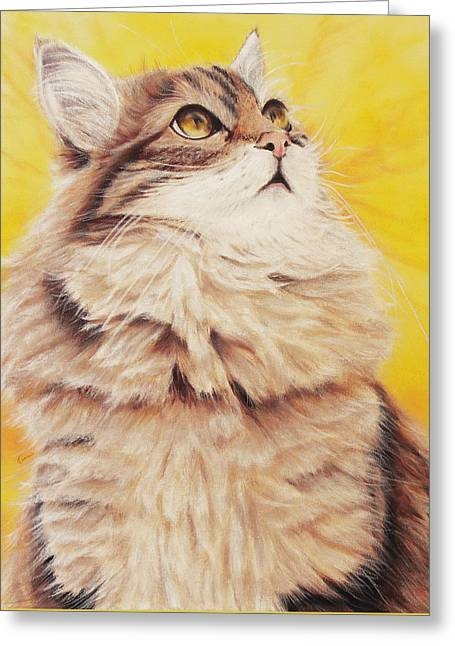 Homesick Cat Greeting Card by Kathleen Wong