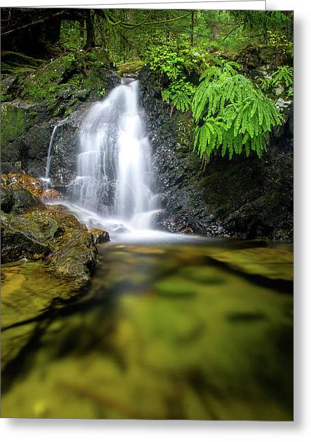 Homesite Falls Autumn Serenity Greeting Card
