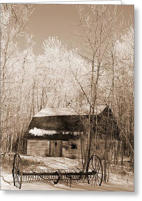Homestead Greeting Card by Pat Purdy