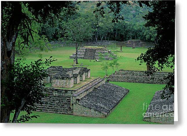 Honduras_22-2 Greeting Card by Craig Lovell