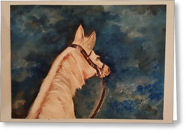 Honey Palomino Horse 28 Greeting Card