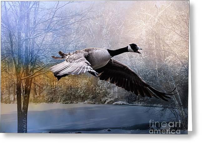 Honking Goose Greeting Card