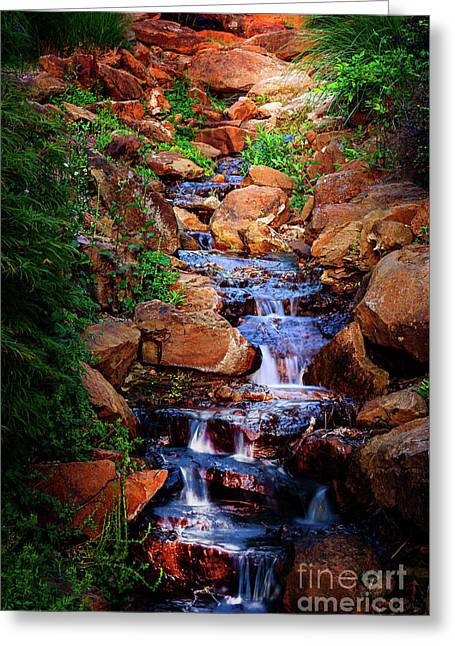 Honor Heights Park Hidden Stream Greeting Card by Tamyra Ayles