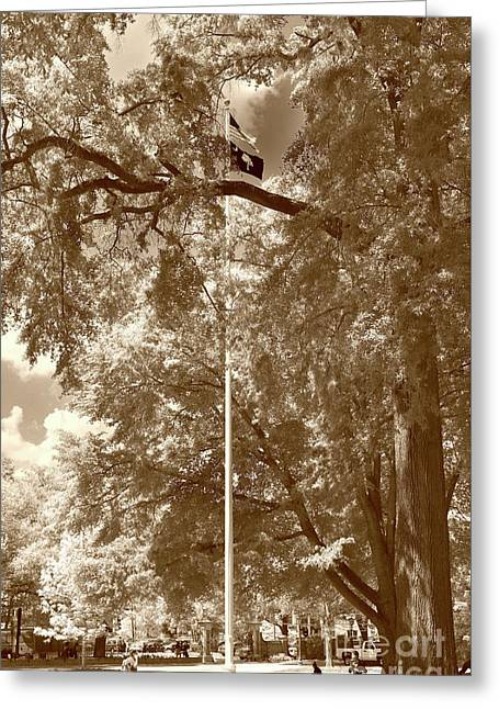 Honor On The Univerity Of South Carolina In Sepia Greeting Card