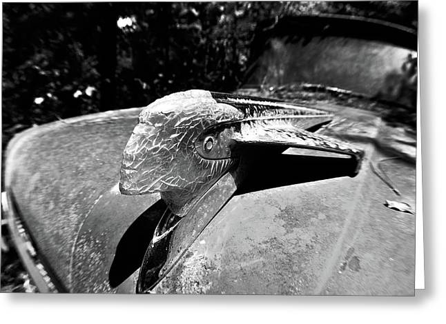 Hood Ornament Detail Greeting Card