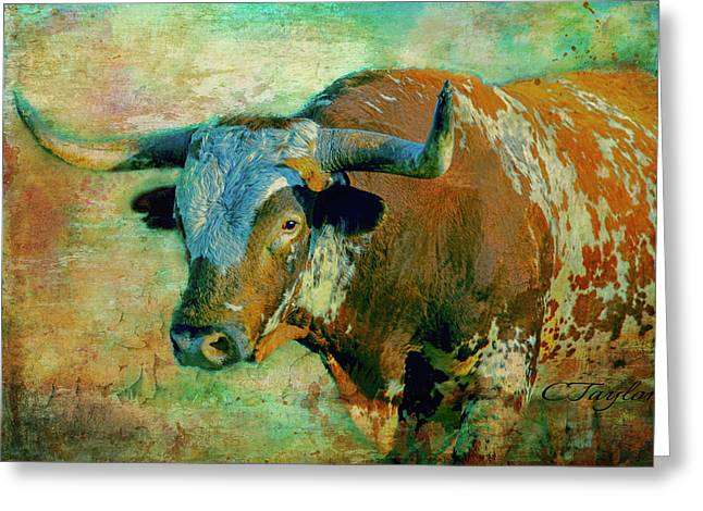 Hook 'em 1 Greeting Card by Colleen Taylor