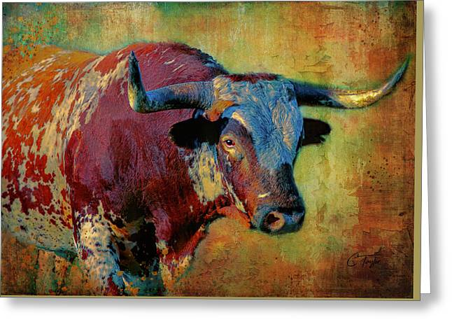 Hook 'em 2 Greeting Card by Colleen Taylor