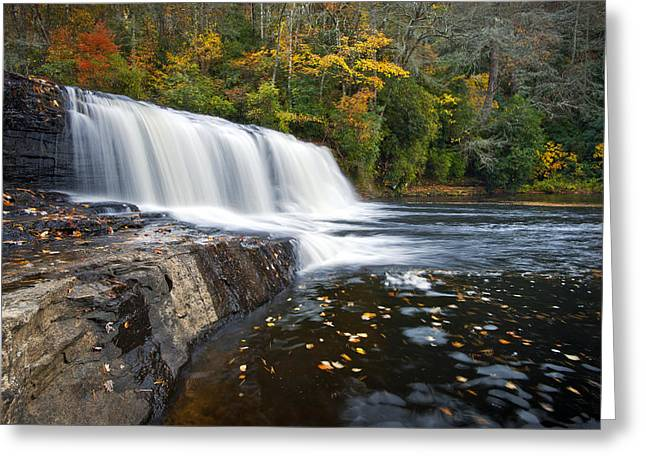 Hooker Falls In Autumn - Fall Foliage In Dupont State Forest Greeting Card by Dave Allen