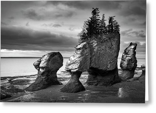 Greeting Card featuring the photograph Hopewell Rocks by Patrick Downey