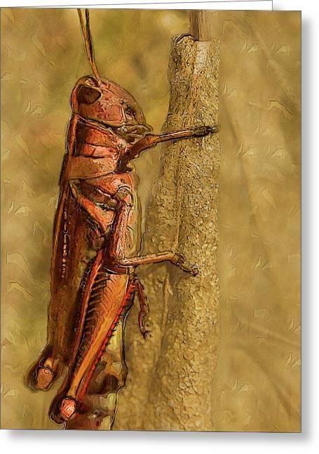 Hopper-macro Painted Greeting Card