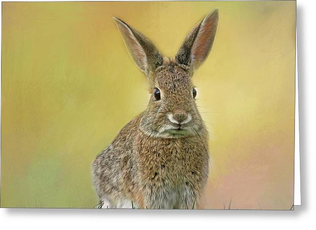 Greeting Card featuring the photograph Hoppy Spring by Donna Kennedy