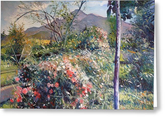 Horingberg Horn Mountain Eastern Cape South Africa Greeting Card by Enver Larney
