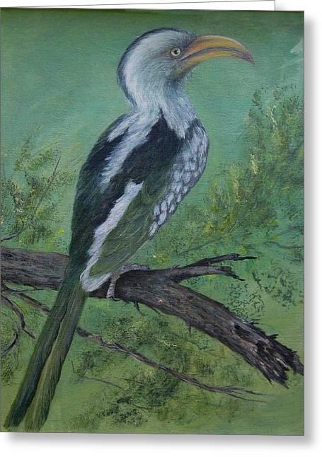 Hornbill Greeting Card by Rita Palm