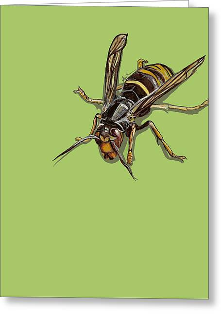 Greeting Card featuring the painting Hornet by Jude Labuszewski