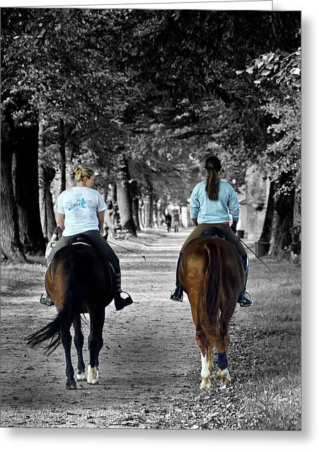 Horsback Rider In Hellbrunn Greeting Card