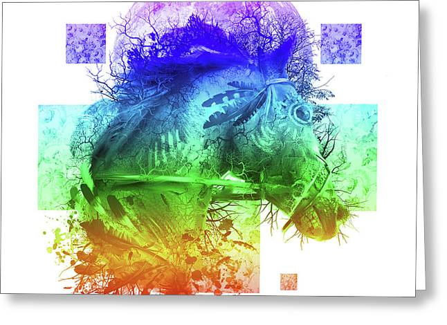 Horse 4 Greeting Card