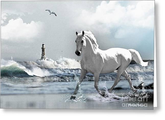 Horse At Roker Pier Greeting Card