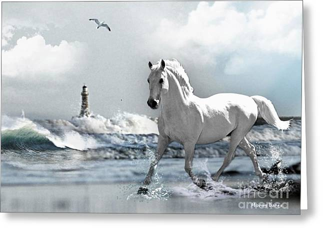Horse A Roker Pier Greeting Card by Morag Bates