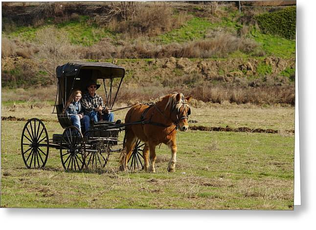 Horse And Buggy Greeting Card by Jeff Swan
