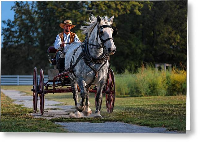 Horse And Buggy Greeting Card by Lone Dakota Photography