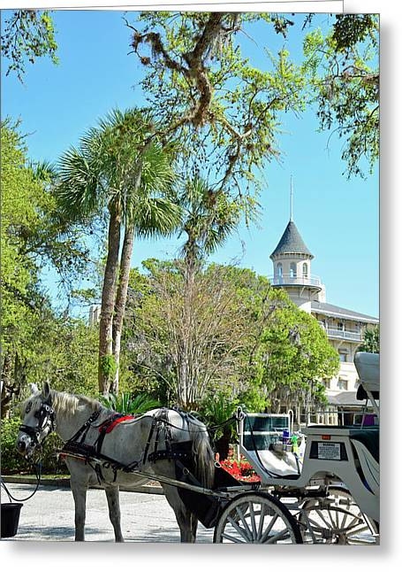 Horse And Carriage At Jekyll Island Club Hotel Greeting Card by Bruce Gourley