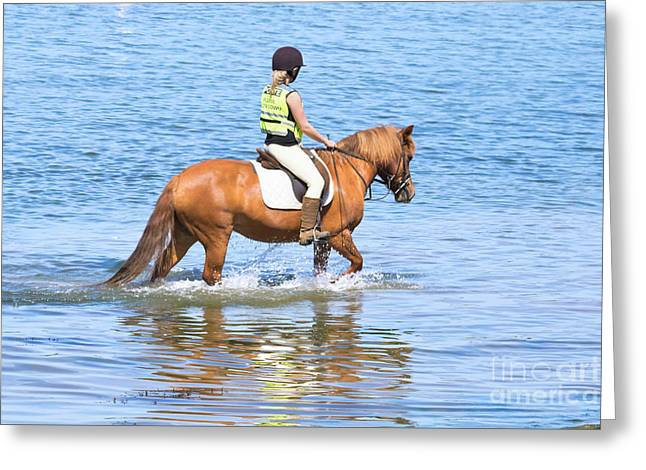 Horse And Rider In The Sea Greeting Card by Terri Waters