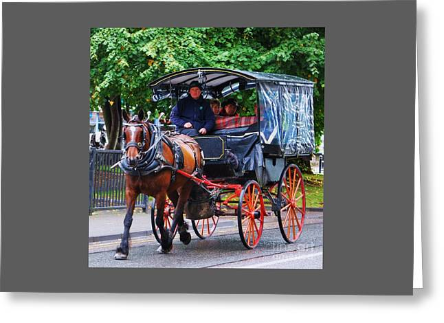 Horse And Trap In Killarney Greeting Card by Poet's Eye