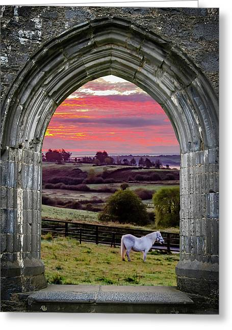 Greeting Card featuring the photograph Horse At Sunrise In County Clare by James Truett